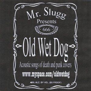 Old Wet Dog