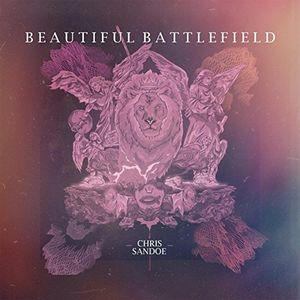 Beautiful Battlefield