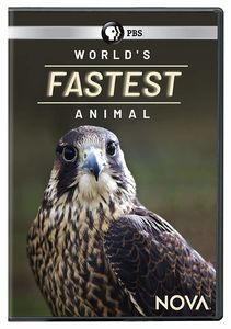 NOVA: World's Fastest Animal