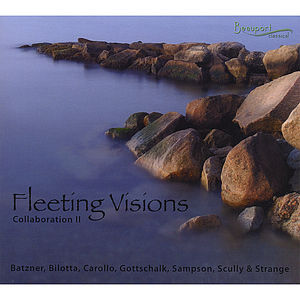 Fleeting Visions: Collaboration 2 /  Various
