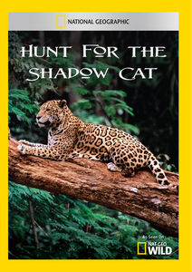 Hunt for the Shadow Cat