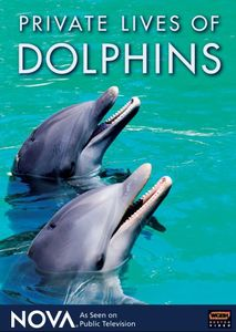 Nova: Private Lives of Dolphins