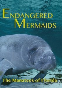 Endangered Mermaids: The Manat