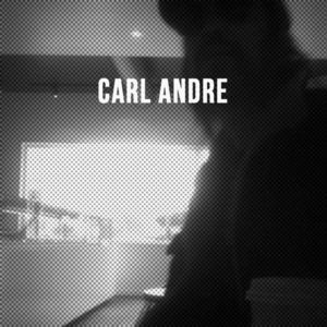 Carl Andre [Import]