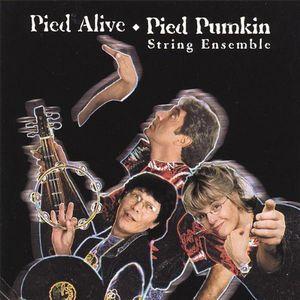 Pied Alive