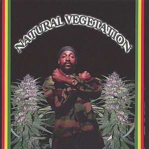 Natural Vegetation /  Various