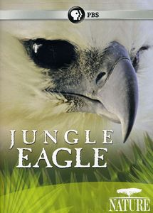 Nature: Jungle Eagle