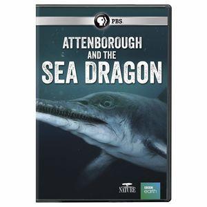 NATURE: Attenborough And The Sea Dragon