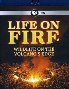 Life on Fire: Wildlife on the Volcanos Edge