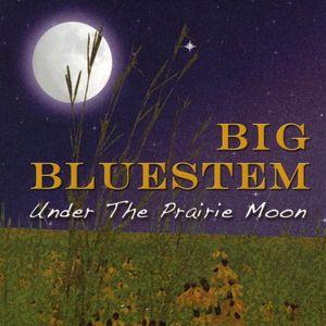 Under the Prairie Moon