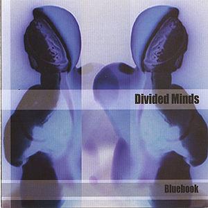 Divided Minds