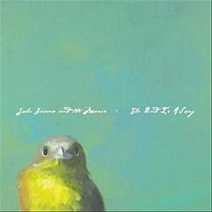 Bird Is a Song
