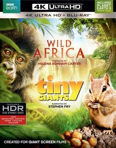 Wild Africa /  Tiny Giants