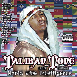 World Wide Intelligence