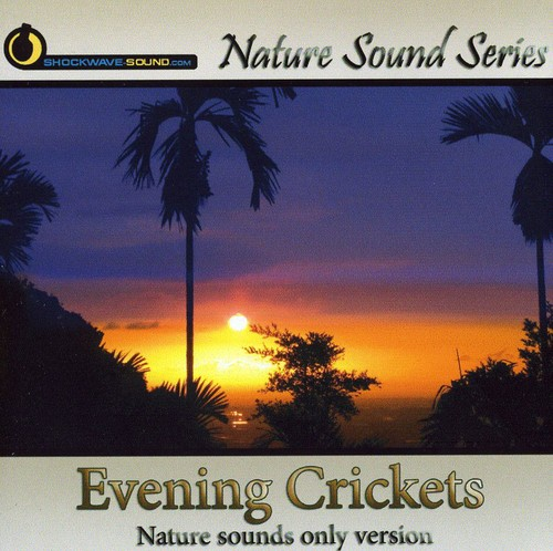 Evening Crickets