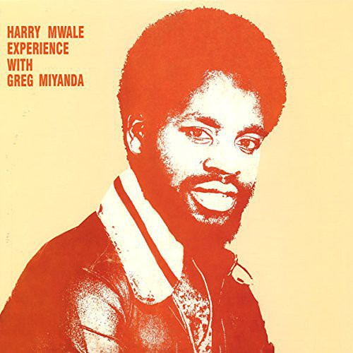 Harry Mwale Experience