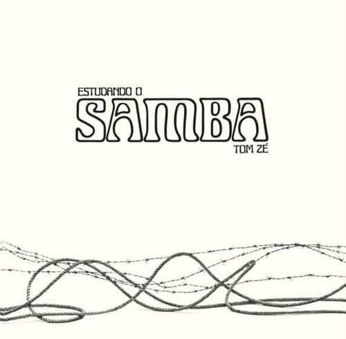Tom Ze - Estudando O Samba