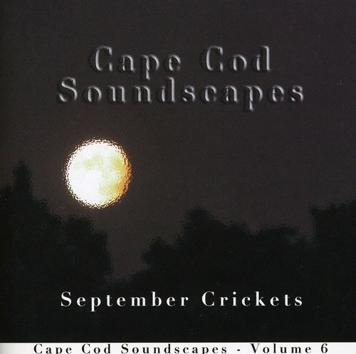Cape Cod Soundscapes 6: September Crickets