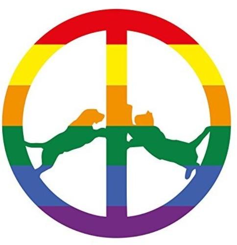 Hype Williams - Rainbow Edition (Ogv)
