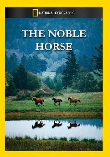 Noble Horse