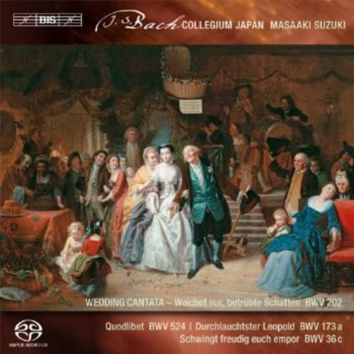 Secular Cantatas 3
