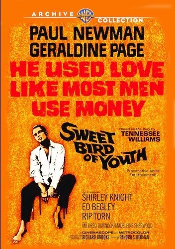 Sweet Bird of Youth