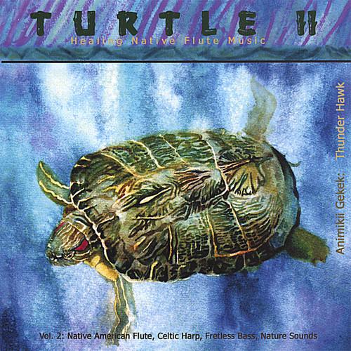 Turtle II Healing Native Flute Music