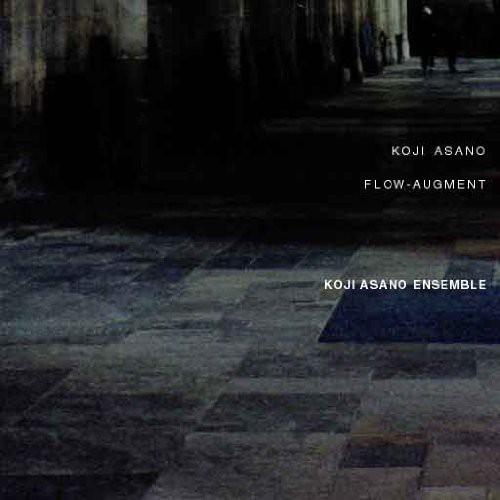 Flow-Augment