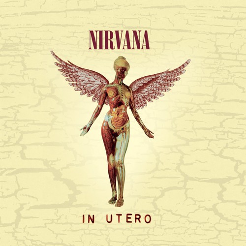 Nirvana-In Utero (20th Anniversary Edition)