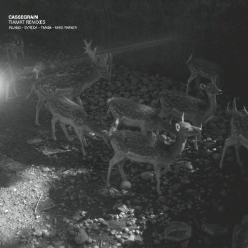 Tiamat Remixes
