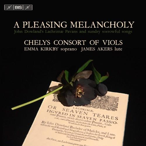 Pleasing Melancholy