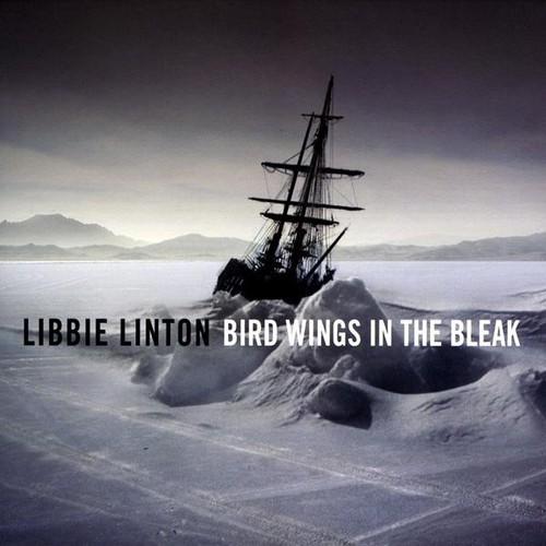 Bird Wings in the Bleak