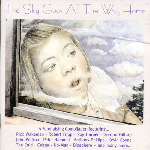 Sky Goes All The Way Home / Various - The Sky Goes All the Way Home
