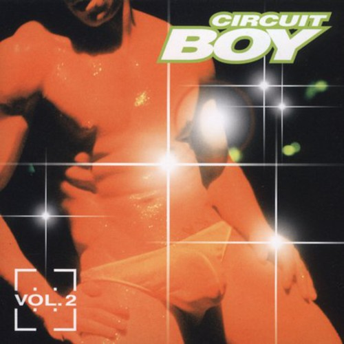 Circuit Boy 2 /  Various