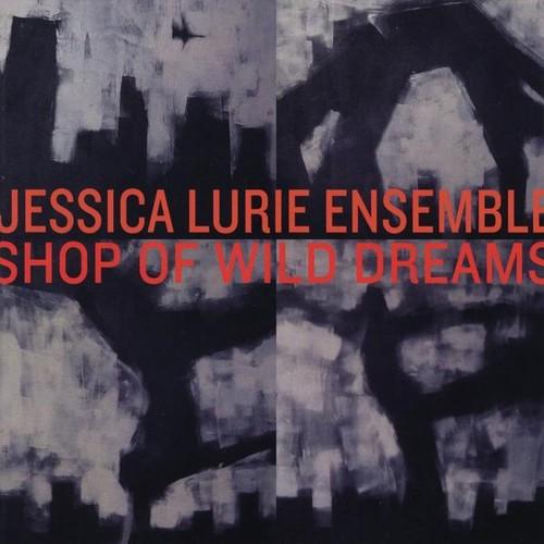 Shop of Wild Dreams