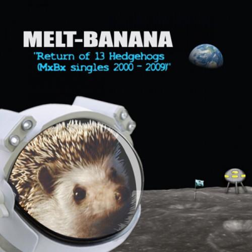 Return of 13 Hedgehogs (MXBX Singles 2000-2009)
