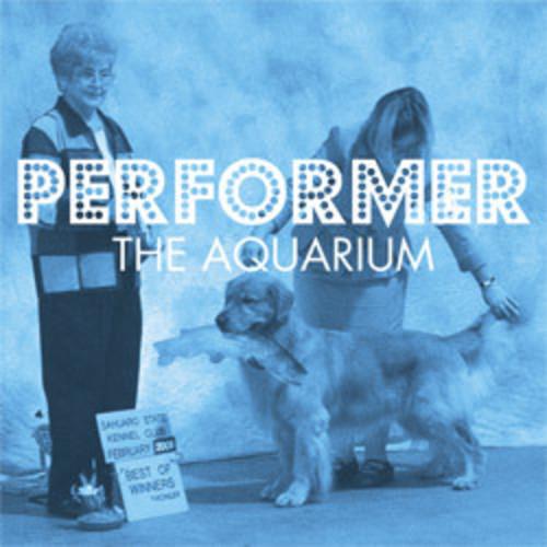 Performer Vinyl