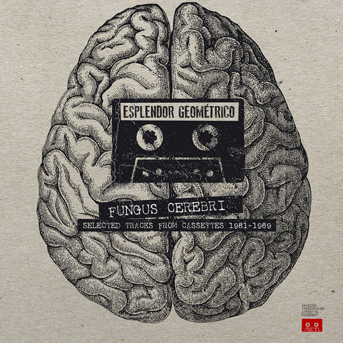 Fungus Cerebri: Selected Tracks From Cassettes