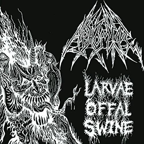 Larvae Offal Swarm