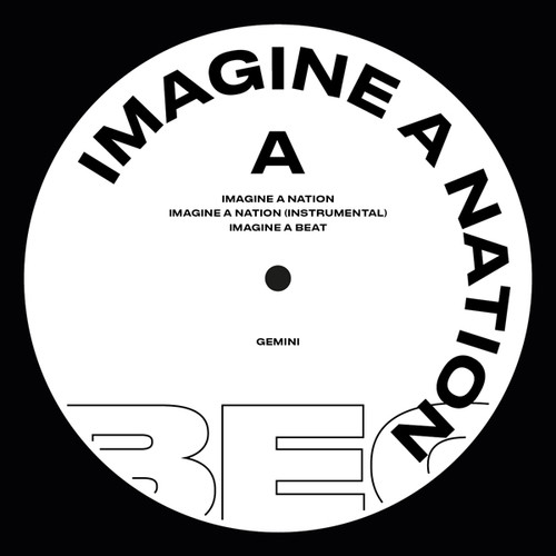Imagine A Nation /  For The Crazy