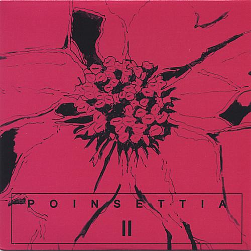 Poinsettia II