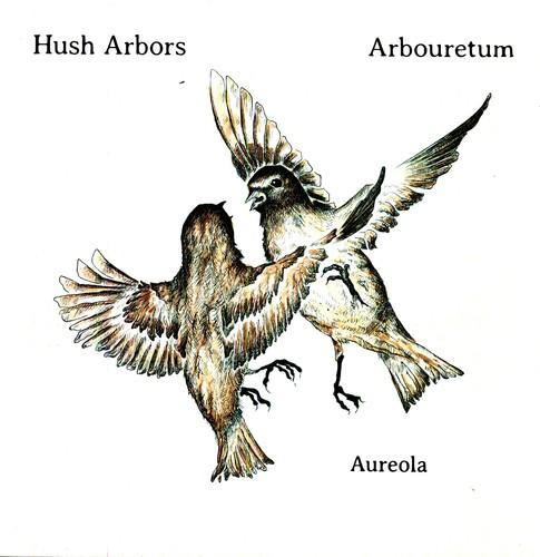 Aureola [Import]