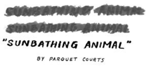 Parquet Courts - Sunbathing Animal [Vinyl Single]