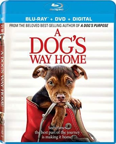 A Dog's Way Home [Movie] - A Dog's Way Home
