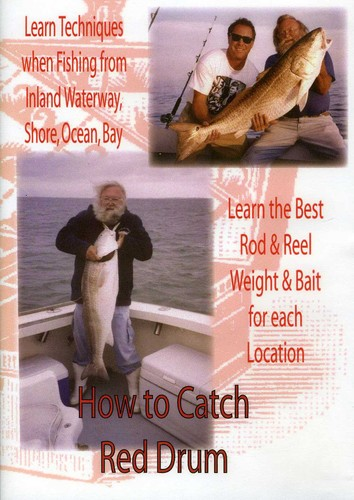 How to Catch Red Drum