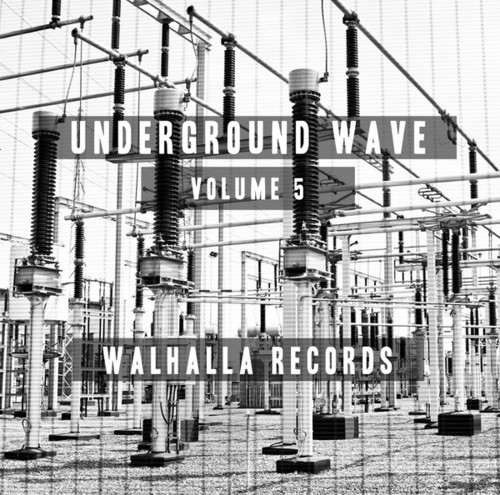 Underground Wave 5 /  Various