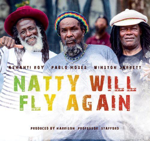 Natty Will Fly Again / Various - Natty Will Fly Again / Various