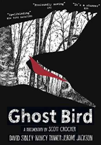 Jerome Jackson - Ghost Bird
