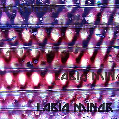 Labia Minor