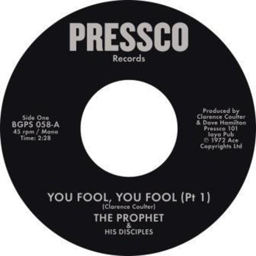 You Fool You Fool (Pt 1) /  You Fool You Fool (Pt2) [Import]